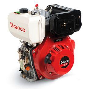 motor-bd-10-eixo-h-branco-partida-eletrica-ref-3444-filetype-detalhes-1